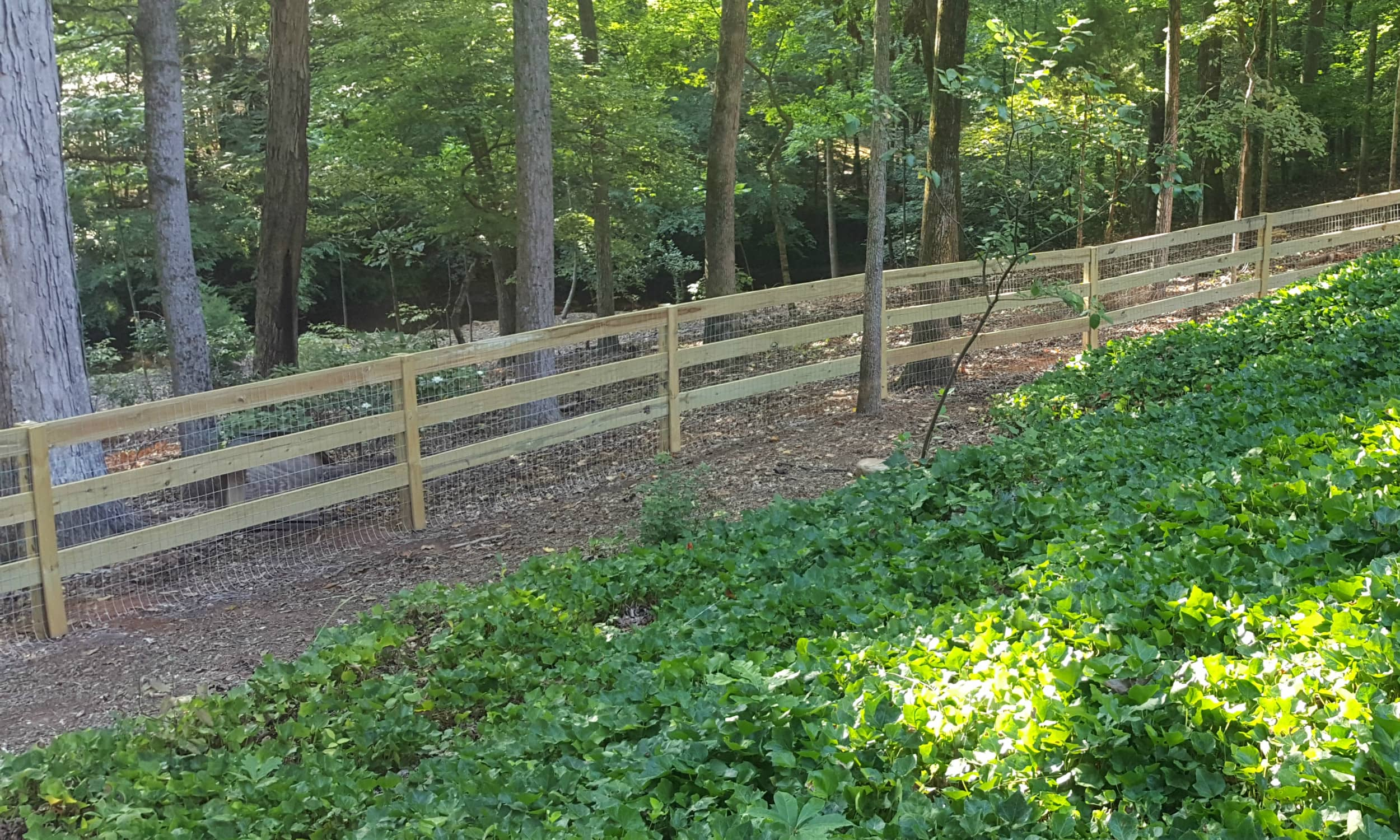 Rail Fence with Wire 2.jpg
