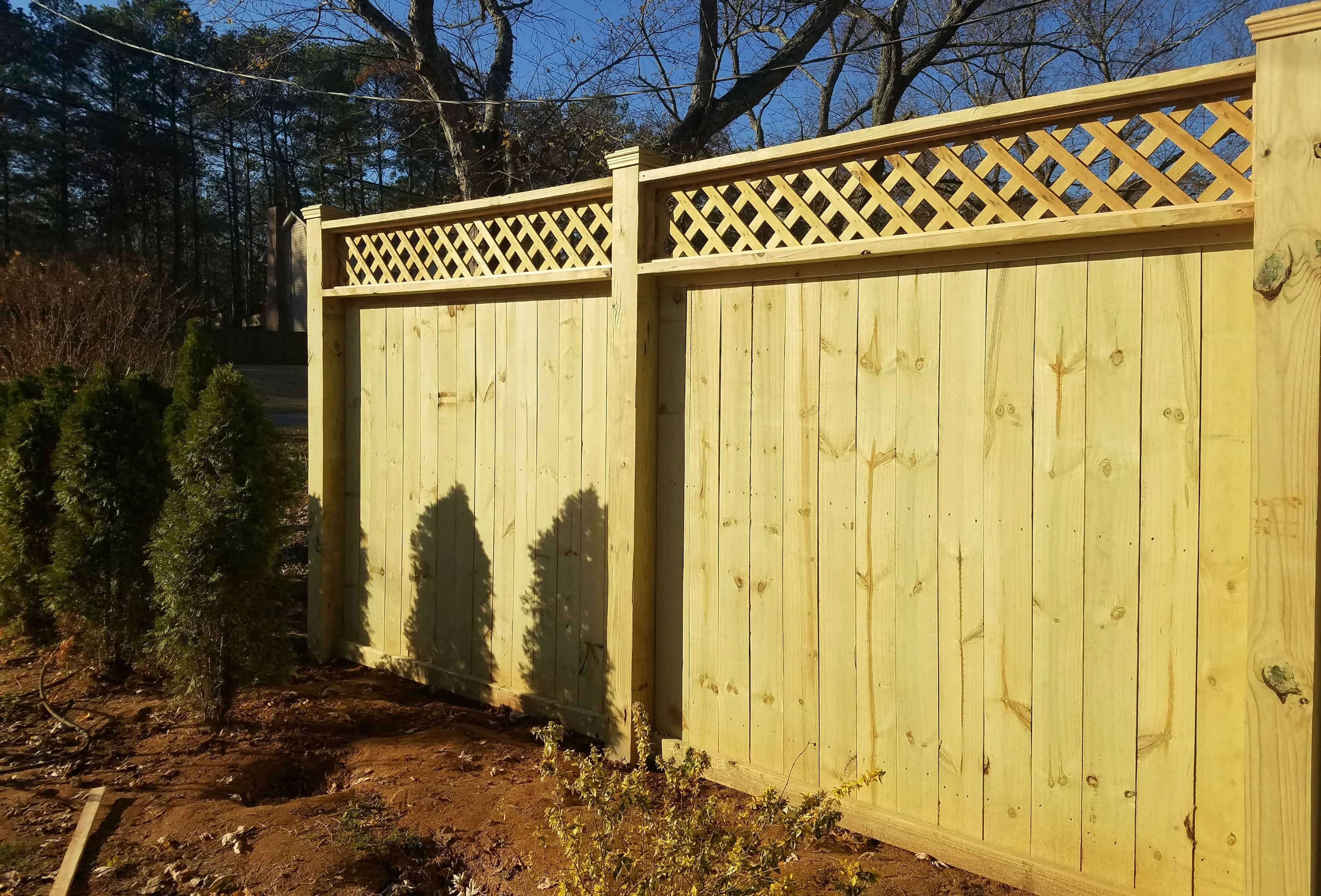 Lettice Privacy Fence.jpg